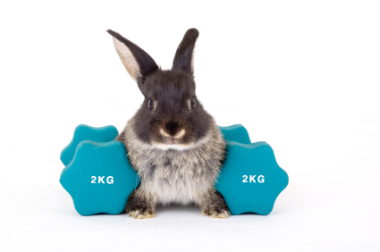 Easter Bunny Workout